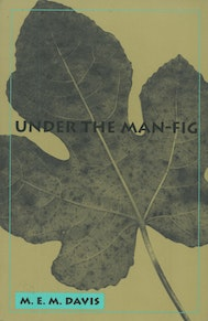 Under the Man Fig