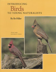 Introducing Birds to Young Naturalists