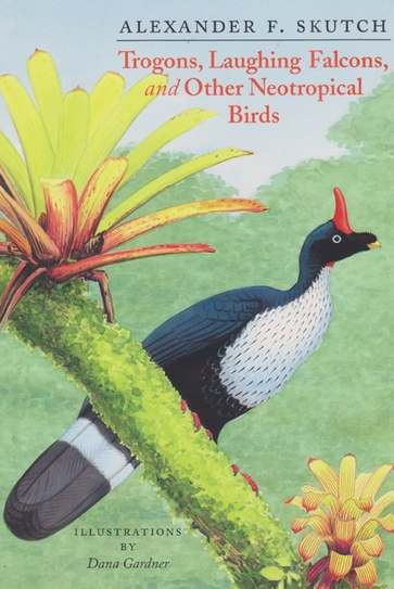 Trogons, Laughing Falcons, and Other Neotropical Birds