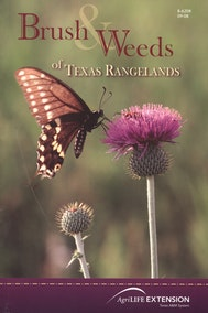 Brush and Weeds of Texas Rangelands