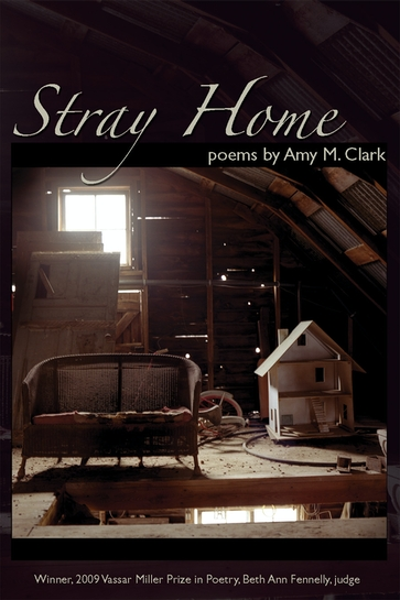 Stray Home