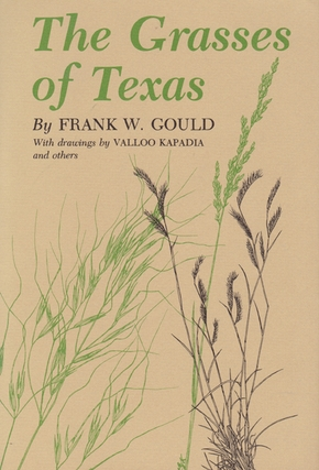 Grasses of Texas