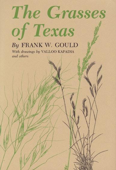 Grasses of Texas