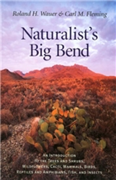 Naturalist's Big Bend