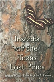 Insects of the Texas Lost Pines