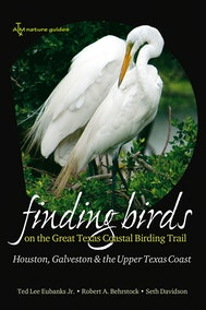 Finding Birds on the Great Texas Coastal Birding Trail