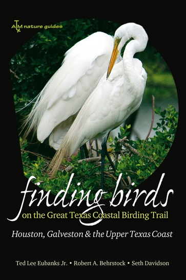 Finding Birds on the Great Texas Coastal Birding Trail