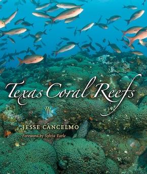 Texas Coral Reefs