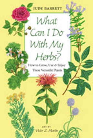 What Can I Do with My Herbs?
