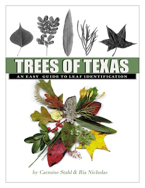 Trees of Texas