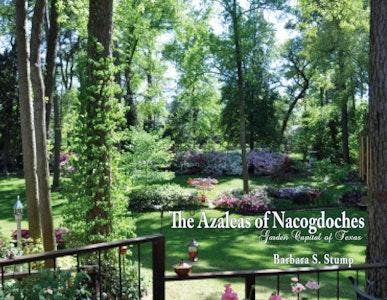 The Azaleas of Nacogdoches