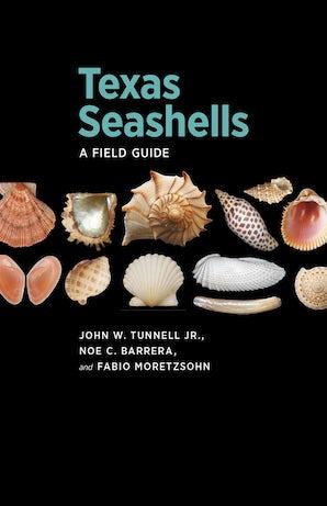 Texas Seashells