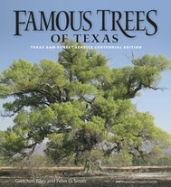 Famous Trees of Texas