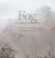 Fog at Hillingdon