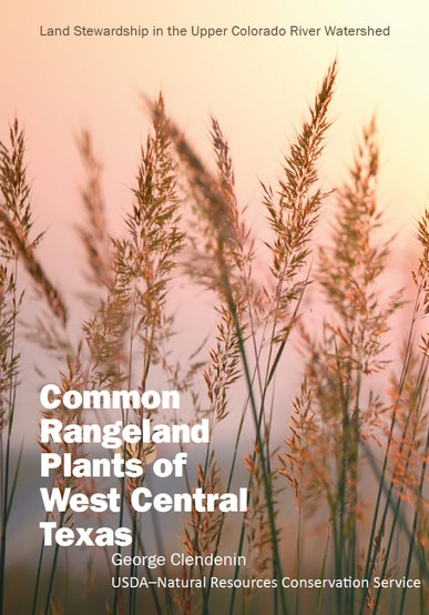 Common Rangeland Plants of West Central Texas