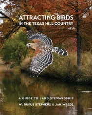 Attracting Birds in the Texas Hill Country