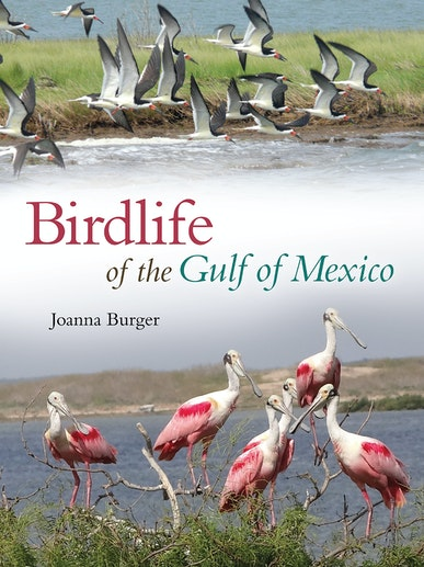 Birdlife of the Gulf of Mexico