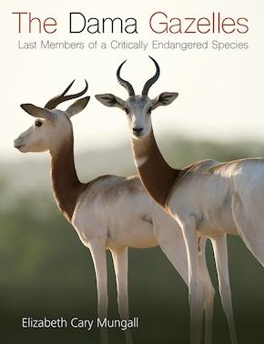 The Dama Gazelles