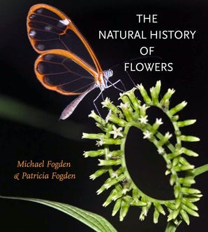 The Natural History of Flowers