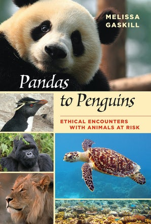 Pandas to Penguins