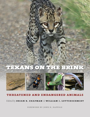 Texans on the Brink
