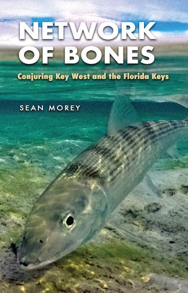 Network of Bones