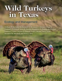 Wild Turkeys in Texas