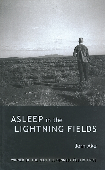Asleep in the Lightning Fields
